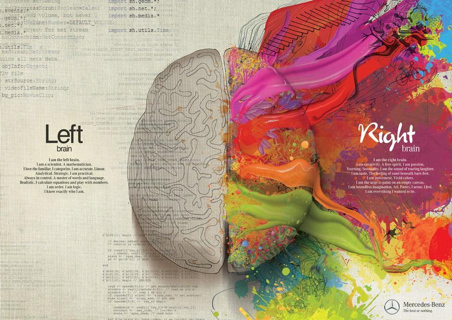 Rechter en linker hersenhelft en de functies daarvan